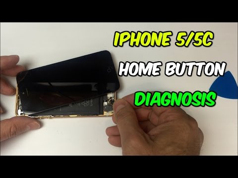How to Troubleshoot iPhone 5 and 5C Home Button