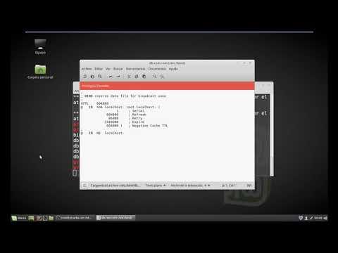 Configurar DNS en Linux Mint