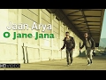 O Jane Jana Jaan And Arya New Hindi Pop Songs 2016