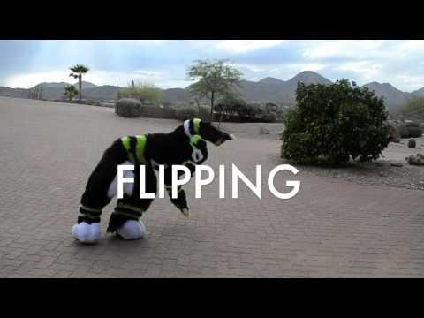 FURSUIT DANCE TUTORIAL