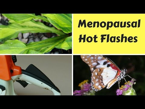 Dealing with Menopausal Hot Flashes and Night Sweats