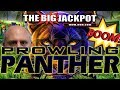 🔥4 JACKPOTS on PROWLING PANTHER! 🍹 FREE GAMES + BACK TO BACK WIN$ 🔥