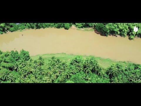 Impact: Cambodge