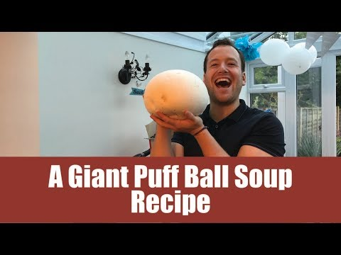 A Giant Puffball Soup Recipe