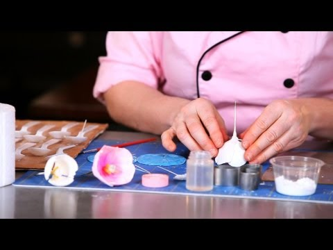 How to Assemble a Tulip | Sugar Flowers