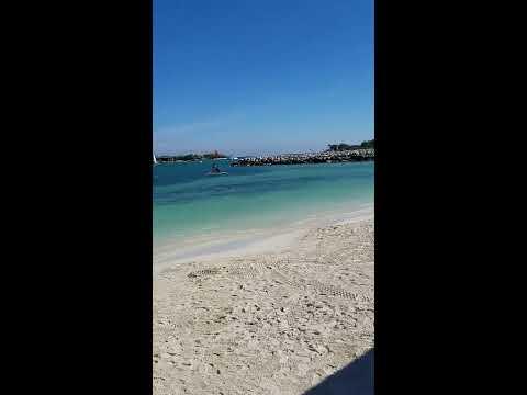 Riu Reggae Resort Overview