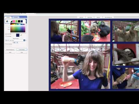 Creating a Picasa Collage