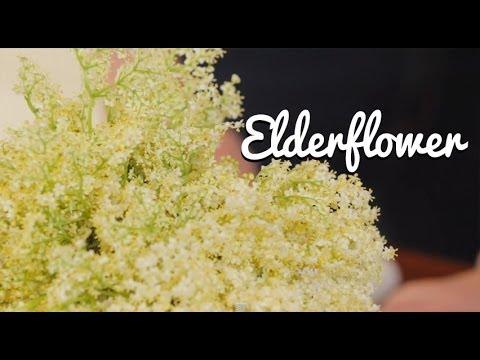 Home-Made Elderflower Cordial - Crumbs