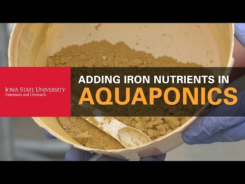 How to Add Iron Nutrients Into Your Aquaponics System