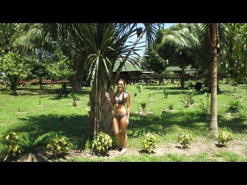 PERU: AMAZON RAINFOREST | PUERTO MALDONADO