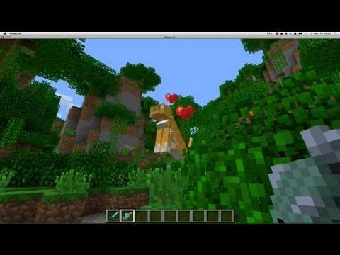 How to Tame Ocelots in Minecraft : Minecraft Tutorials