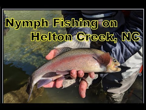 Nymph Fishing Helton Creek ft. Chad Edwards