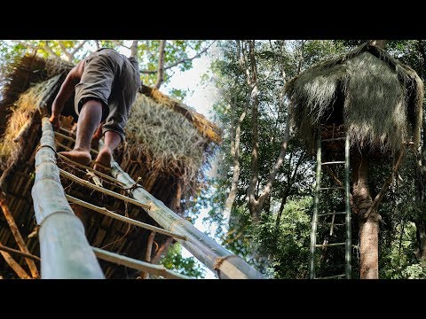 Primitive Technology, Build tree house in forest End, Bamboo ladder