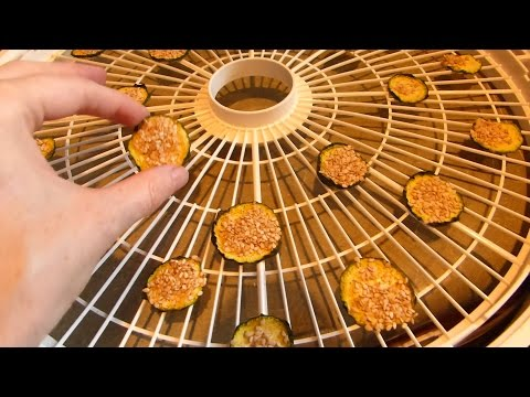 How to Make Dried Zucchini Chips in the Food Dehydrator - Nesco 2014