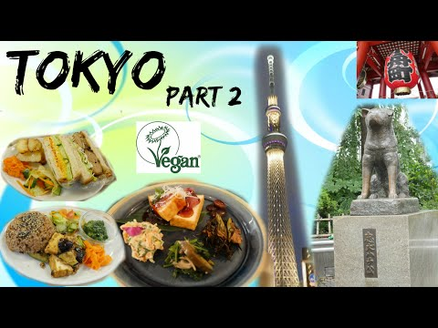 Shibuya, Meiji Jingu, Asakusa, Tokyo Sky Tree and Vegan Food || Tokyo Part 2