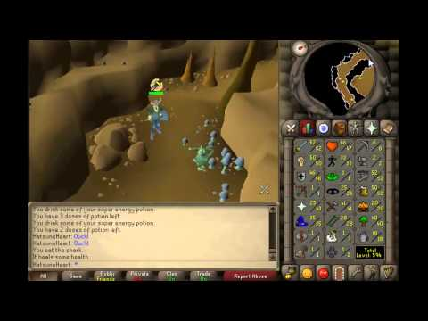 Monkey Madness Guide for 2007 Runescape [Pure Friendly]