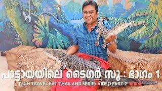 Sriracha Tiger Zoo Part 1 - Pattaya - Tech Travel Eat Thailand Malayalam Video Part 2