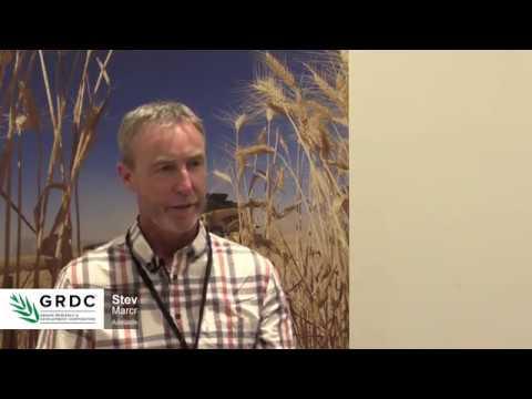 Blackleg CM a new pest App to help reduce blackleg & increase profits, Steve Marcroft Bendigo Update
