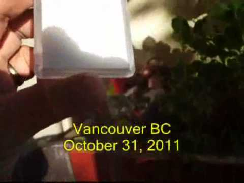 Probable underlying cause of the Vancouver October 2011 cold-flu epidemic