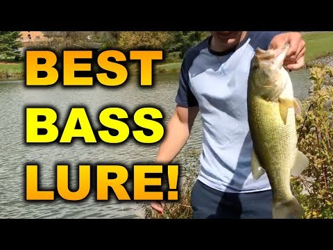 The BEST Lure for BIG Bass -- Jig Fishing Tips