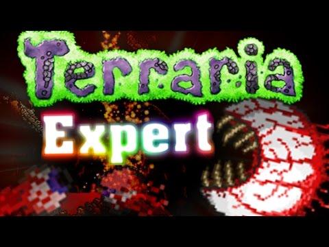 Eye of Cthulhu Fight & Exploring! Terraria Expert Mode #2