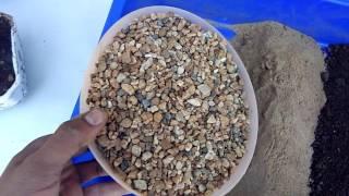 बोन्साई मिट्टी बनाने का सबसे आसान तरीका How to prepare bonsai soil ,easiest method and tips