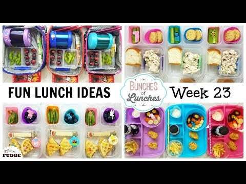 FUN School Lunch Ideas + What they Ate    Bunches of Lunches