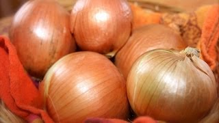 To learn about the health benefits of food, visit: http://www.benefitsoffood.blogspot.com  Here are some of the important health benefits of onions.