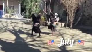 Download Afghan boys Video