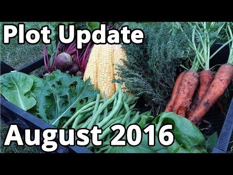 Plot Update August 2016