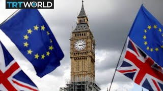 UK's new anti-brexit party