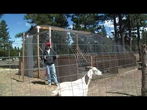 How To Use Cattle Panels For Barns, Greenhouses, or Bird Housing