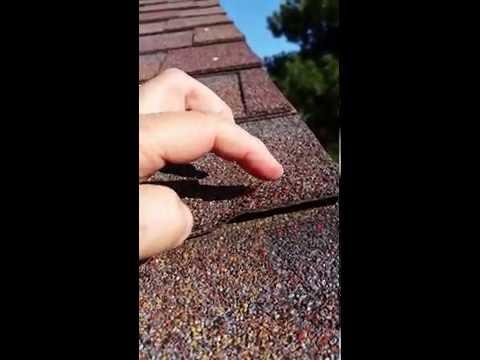 Roof Raised Shingles