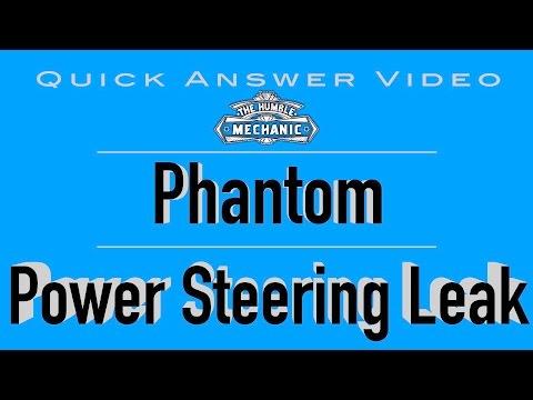 Volkswagen with Phantom Power Steering Leak?