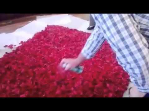 rose petal wall