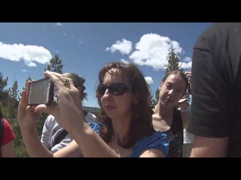 Family Reunion in Yellowstone