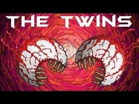 terreria twins twice?!