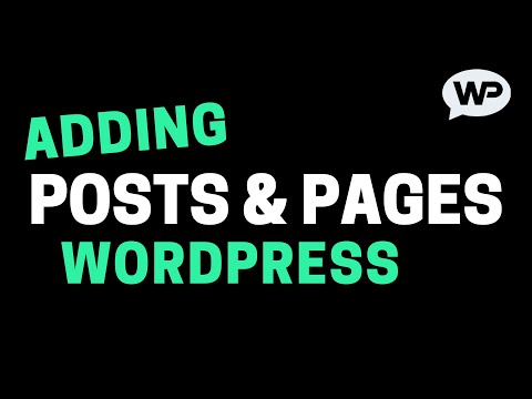 How To Add Pages & Posts on WordPress