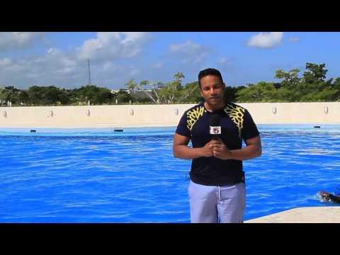 Reportajes Matinal-Ocean Adventure Punta Cana-Cocobongo-Barcelo Palace-Alex Santiago-Telemicro