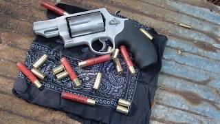 Smith and Wesson Governor