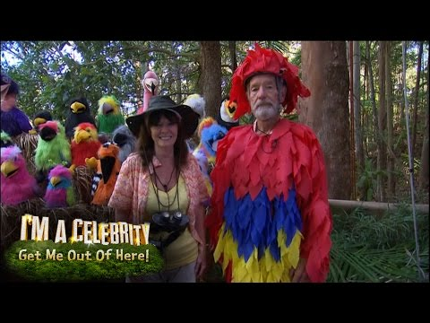Michael Buerk Becomes A Bird | I'm A Celebrity...Get Me Out Of Here!