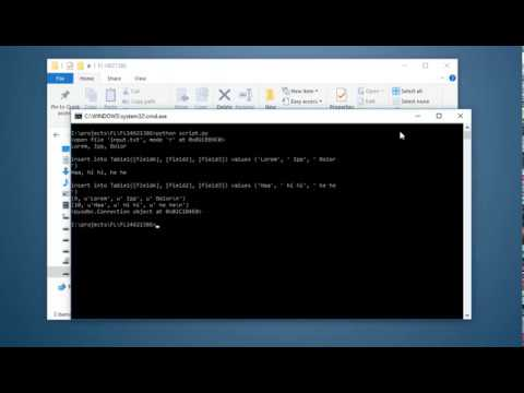 Python parse text file and insert to MS Access