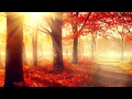 Relaxing Piano Music For Studying Concentration  Study Music  Instrumental Studying Music