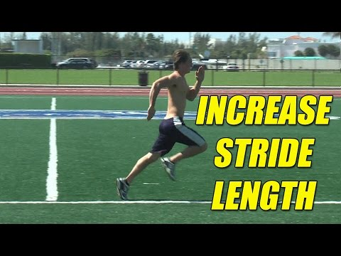 Increase running stride length and running turnover rate - hip Flexor Muscles.