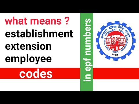 (HINDI) what means establishment, extension and employee code in pf number?