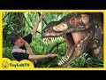 Giant Life Size Dinosaur Raptor Chase At Discover The Dinosaurs Jurassic Event For Kids
