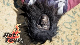 Download Planet Of The Apes Gorilla Captain by Hot Toys Video