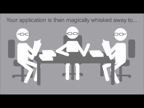 York University Specialized Honours Program in Psychology - Program overview animation