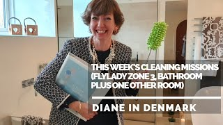 This week's cleaning missions plus a quick bathroom clean (Flylady Zone 3), November 2019