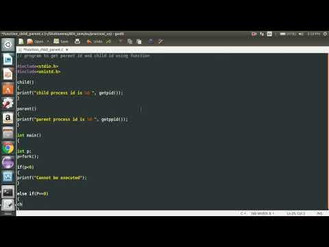 c program to child & parent process id using function